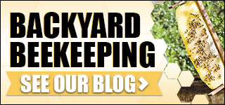 Your guide to beekeeping. Read our blog
